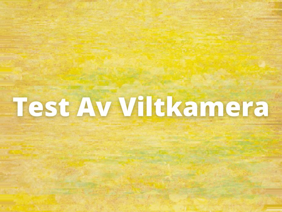 Test Av Viltkamera